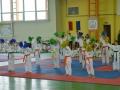 karate (11)
