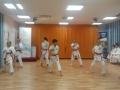 karate (15)